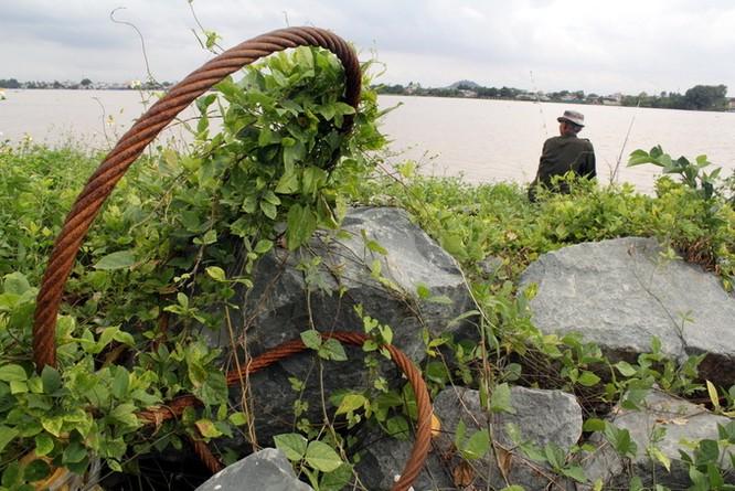 Dự án lấn sông Đồng Nai như thế nào sau 2 năm tạm dừng ảnh 6