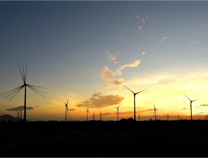 Điện gió Trung Nam tại Ninh Thuận (Nguồn: Trung Nam Group)