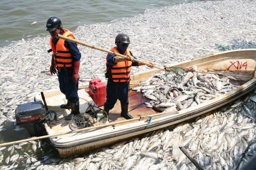 Hà Nội: Chi 128 tỷ đồng nạo vét Hồ Tây, sao không thấy có bùn? ảnh 1