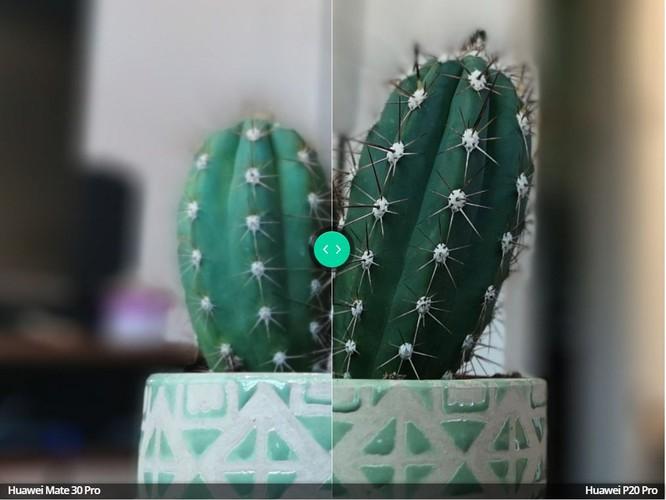 So sánh camera trên 2 chiếc máy Huawei P20 Pro và Huawei Mate 30 Pro ảnh 10