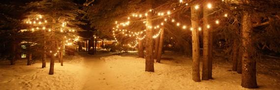 Mẹo giúp bạn có được những bức ảnh đẹp trong ngày Giáng sinh sắp tới ảnh 3