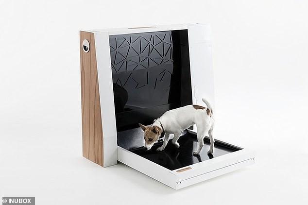 Nhà vệ sinh thông minh dành cho cún cưng ảnh 1