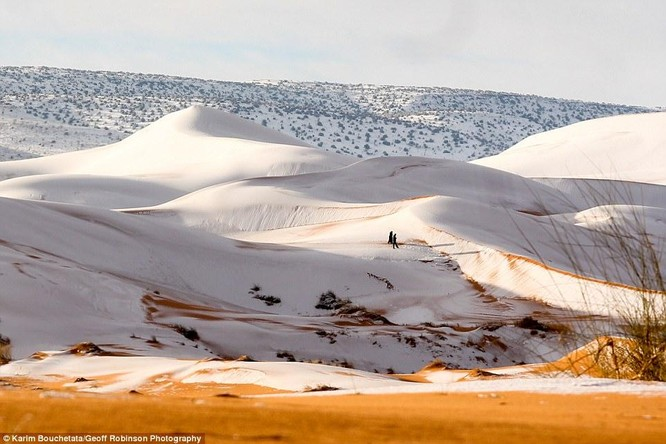 Chuyện lạ: Tuyết rơi phủ trắng một vùng sa mạc Sahara ảnh 1