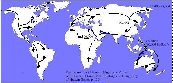 Con người đã đóng vai trò gì trong sự tuyệt chủng của các loài hiện đại? ảnh 2