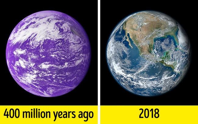 13 sự thật trên Trái Đất không phải ai cũng biết ảnh 5