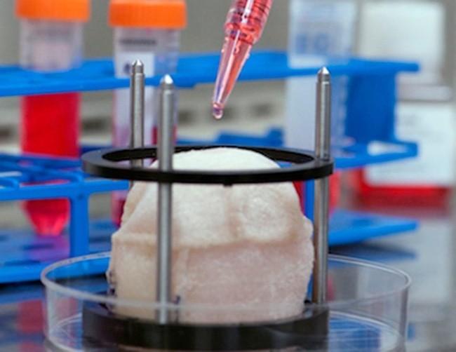 13 khám phá khoa học đáng tự hào sẽ thay đổi cuộc sống nhân loại ảnh 5