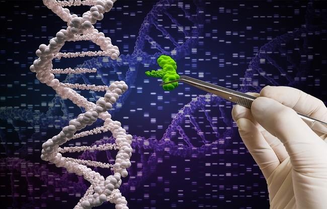 13 khám phá khoa học đáng tự hào sẽ thay đổi cuộc sống nhân loại ảnh 3