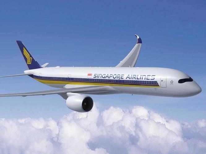 Xếp hạng 11 đường bay dài nhất thế giới ảnh 4