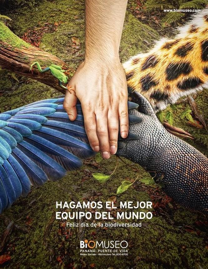 13 hình ảnh quảng cáo tuyên truyền thông điệp ý nghĩa ảnh 2