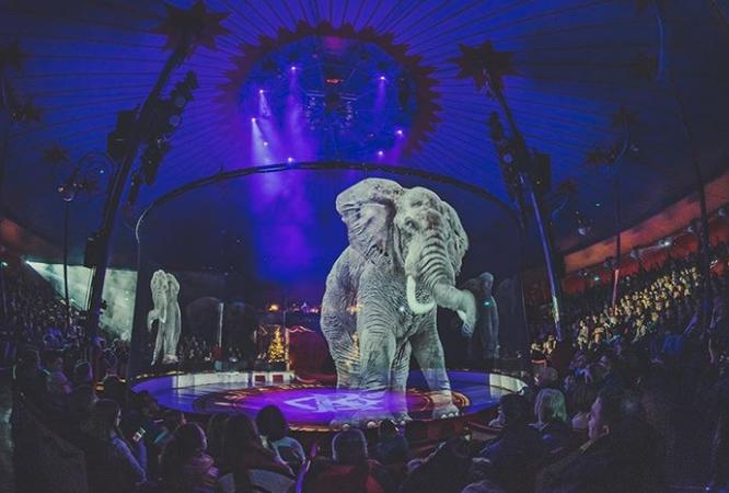 Ấn tượng màn trình diễn động vật hoang dã tại rạp xiếc 4.0 ảnh 2