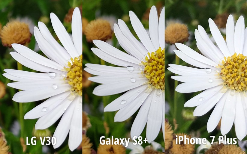 So sánh ảnh chụp từ LG V30 với Galaxy S8+ và iPhone 7 Plus ảnh 4