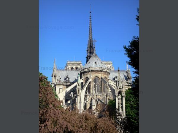 Chùm ảnh về vẻ đẹp của Nhà thờ Đức Bà Paris trước vụ hỏa hoạn làm sập mái vòm và tháp đêm 15/4 ảnh 1