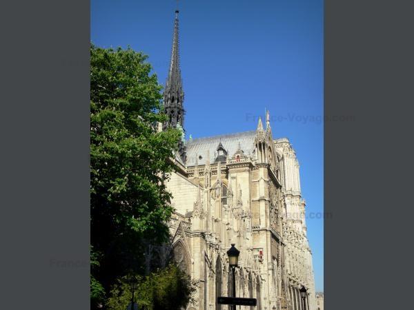 Chùm ảnh về vẻ đẹp của Nhà thờ Đức Bà Paris trước vụ hỏa hoạn làm sập mái vòm và tháp đêm 15/4 ảnh 29