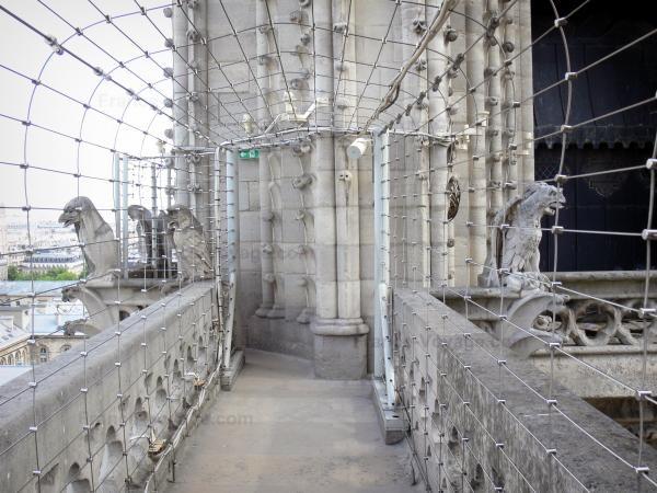 Chùm ảnh về vẻ đẹp của Nhà thờ Đức Bà Paris trước vụ hỏa hoạn làm sập mái vòm và tháp đêm 15/4 ảnh 28