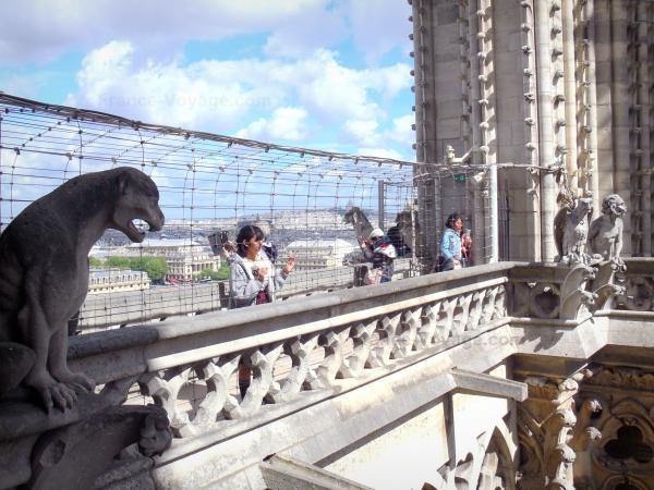 Chùm ảnh về vẻ đẹp của Nhà thờ Đức Bà Paris trước vụ hỏa hoạn làm sập mái vòm và tháp đêm 15/4 ảnh 25