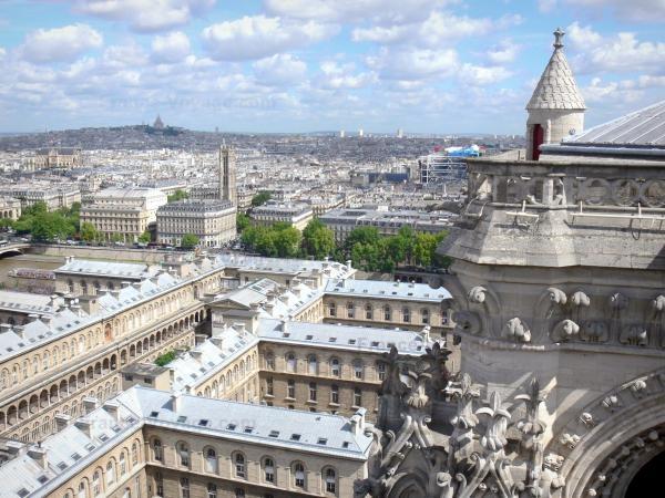 Chùm ảnh về vẻ đẹp của Nhà thờ Đức Bà Paris trước vụ hỏa hoạn làm sập mái vòm và tháp đêm 15/4 ảnh 23