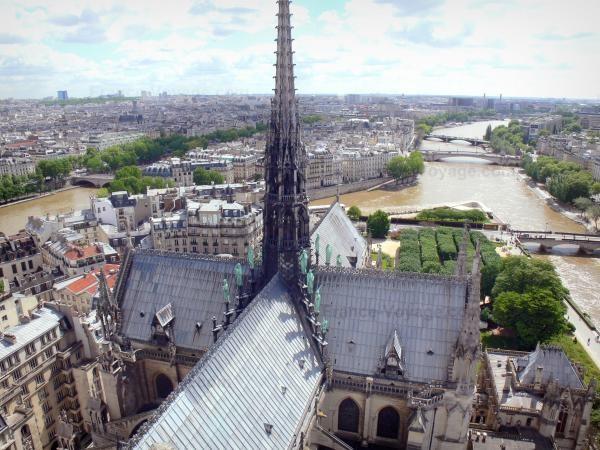Chùm ảnh về vẻ đẹp của Nhà thờ Đức Bà Paris trước vụ hỏa hoạn làm sập mái vòm và tháp đêm 15/4 ảnh 22