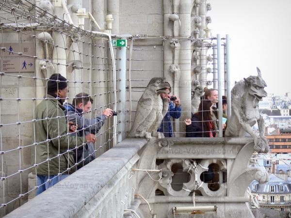 Chùm ảnh về vẻ đẹp của Nhà thờ Đức Bà Paris trước vụ hỏa hoạn làm sập mái vòm và tháp đêm 15/4 ảnh 32