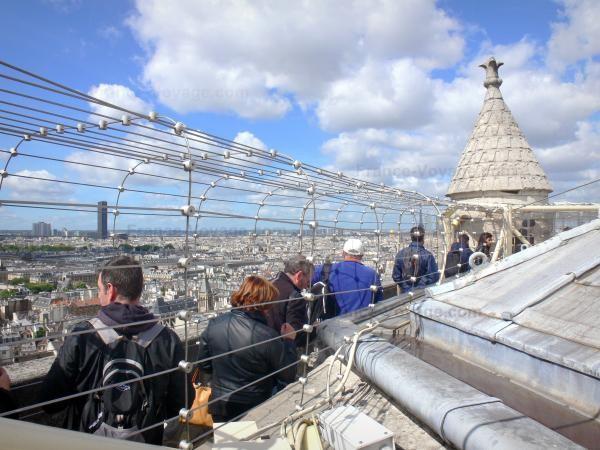 Chùm ảnh về vẻ đẹp của Nhà thờ Đức Bà Paris trước vụ hỏa hoạn làm sập mái vòm và tháp đêm 15/4 ảnh 5