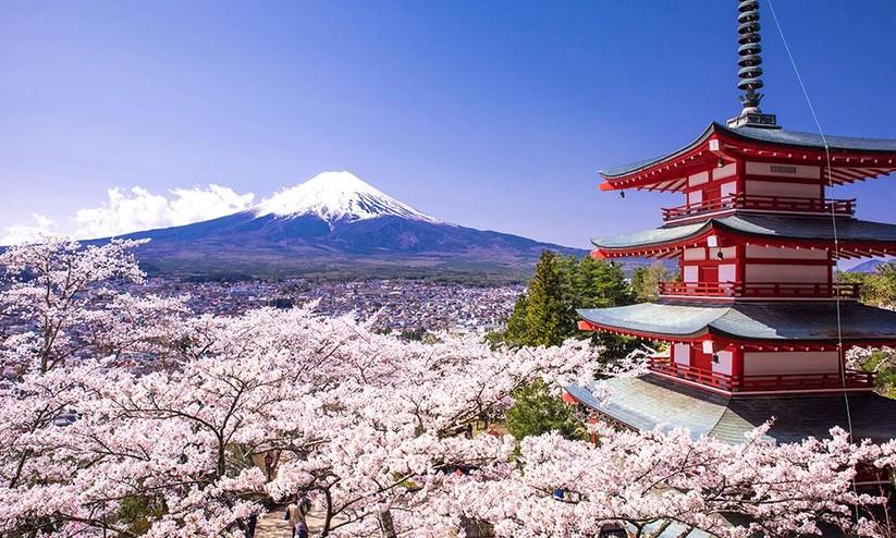 Vị thế đặc biệt của Nhật Bản trong cạnh tranh chiến lược toàn diện Mỹ-Trung ảnh 4