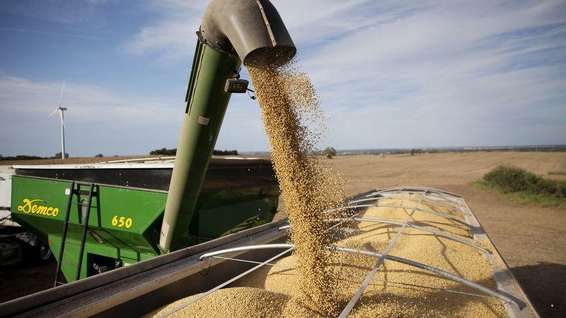 """Cuộc chiến thương mại nông nghiệp của ông Trump đã """"phủ sóng"""" toàn cầu ảnh 7"""