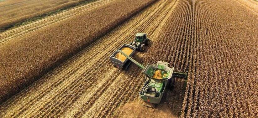 """Cuộc chiến thương mại nông nghiệp của ông Trump đã """"phủ sóng"""" toàn cầu ảnh 11"""